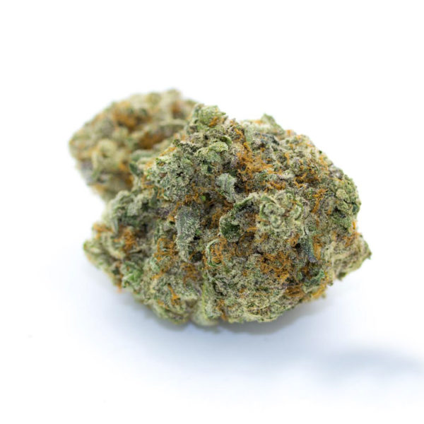 GOD-Buy-Medical-Marijuana-Buy-Weed-Online